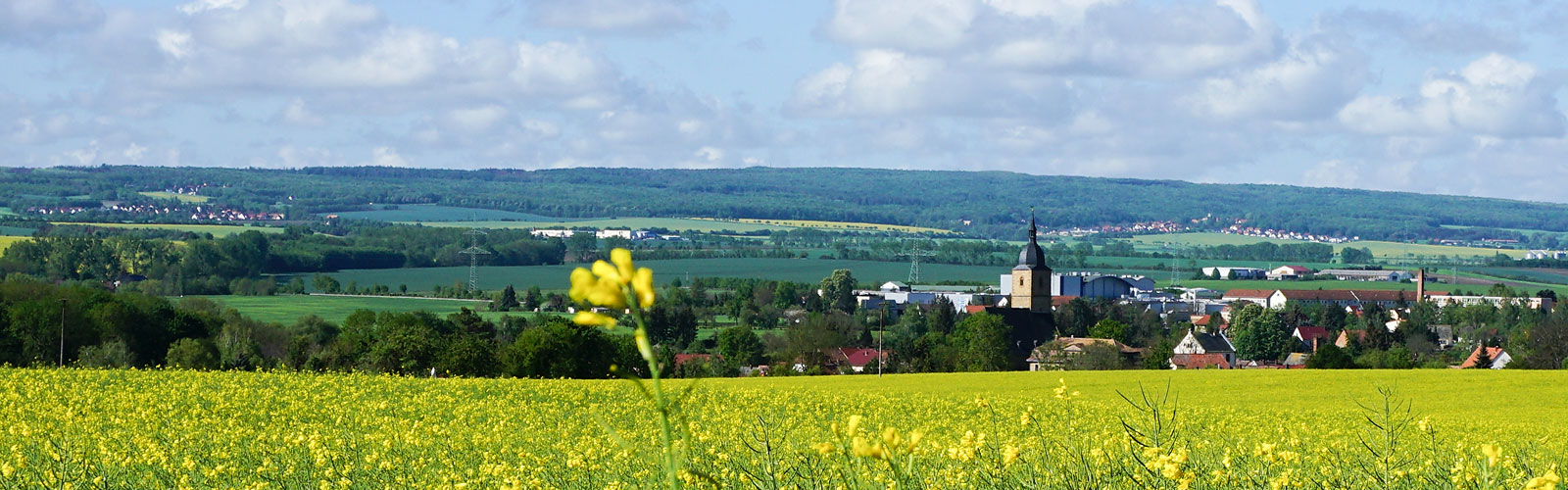Buttelstedt mit den Ortsteilen Daasdorf, Nermsdorf und Weiden