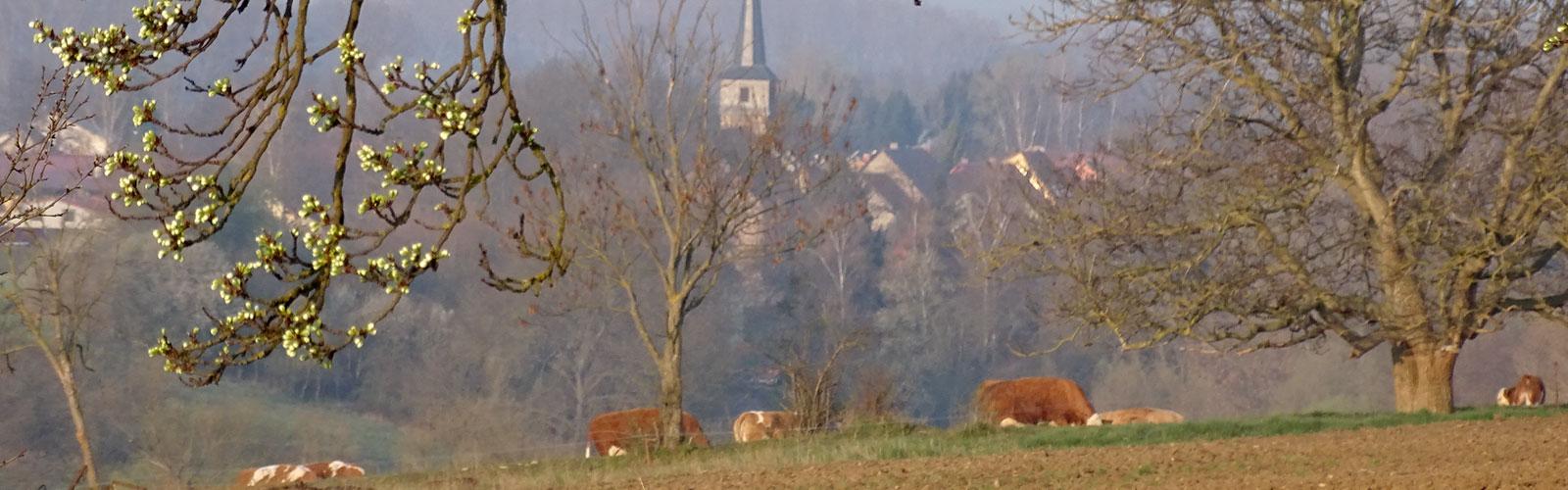 Krautheim, Haindorf